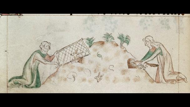 women-hunting-rabbits-royal2bvii
